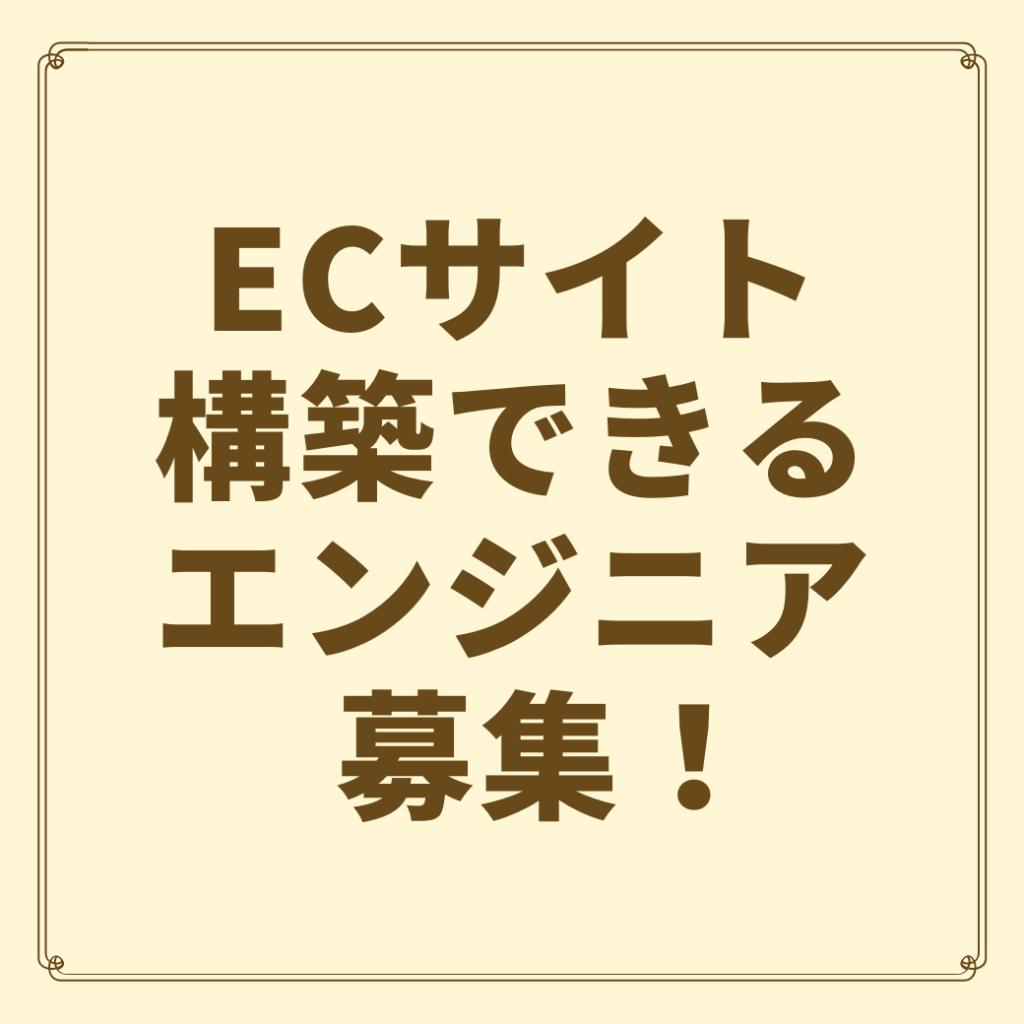 ENJINIA SAITOKOUCHIKU WEBSEISAKU ECSAITO Meganto EC-CUBE HUKUGYO