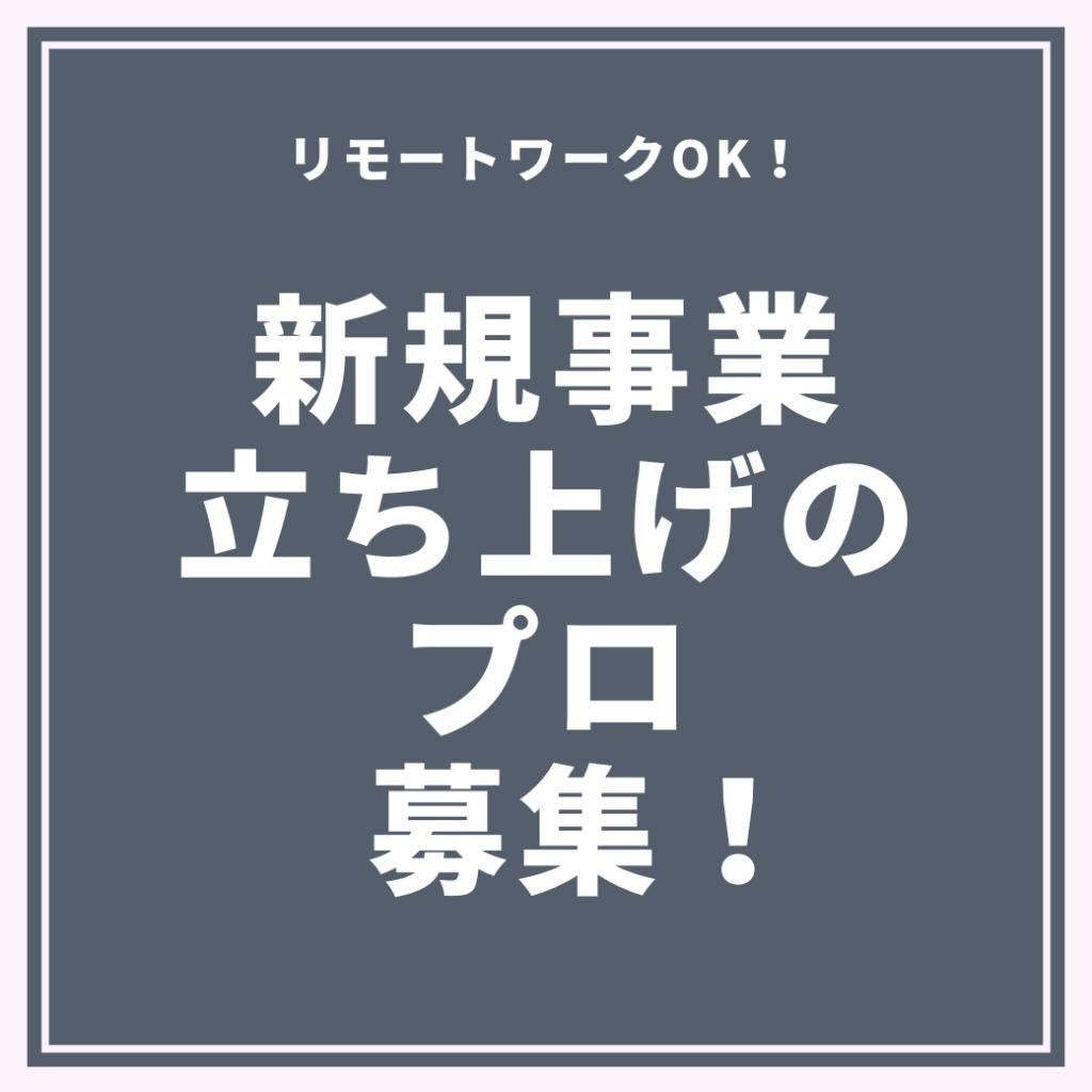 SINKIJIGYO SINKIJIGYOTACHIAGE KONSARUTHINGU KEIEKIKAKU RIMO-TO RIMO-TOWA-KU HUKUGYO