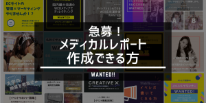 MEDHIKARUREPO-TO REPO-TO REPO-TOSAKUSEI CYOSASEKKEI RIMO-TO RIMO-TOWA-KU HURURIMO-TO HUKUGYO FUKUGYO